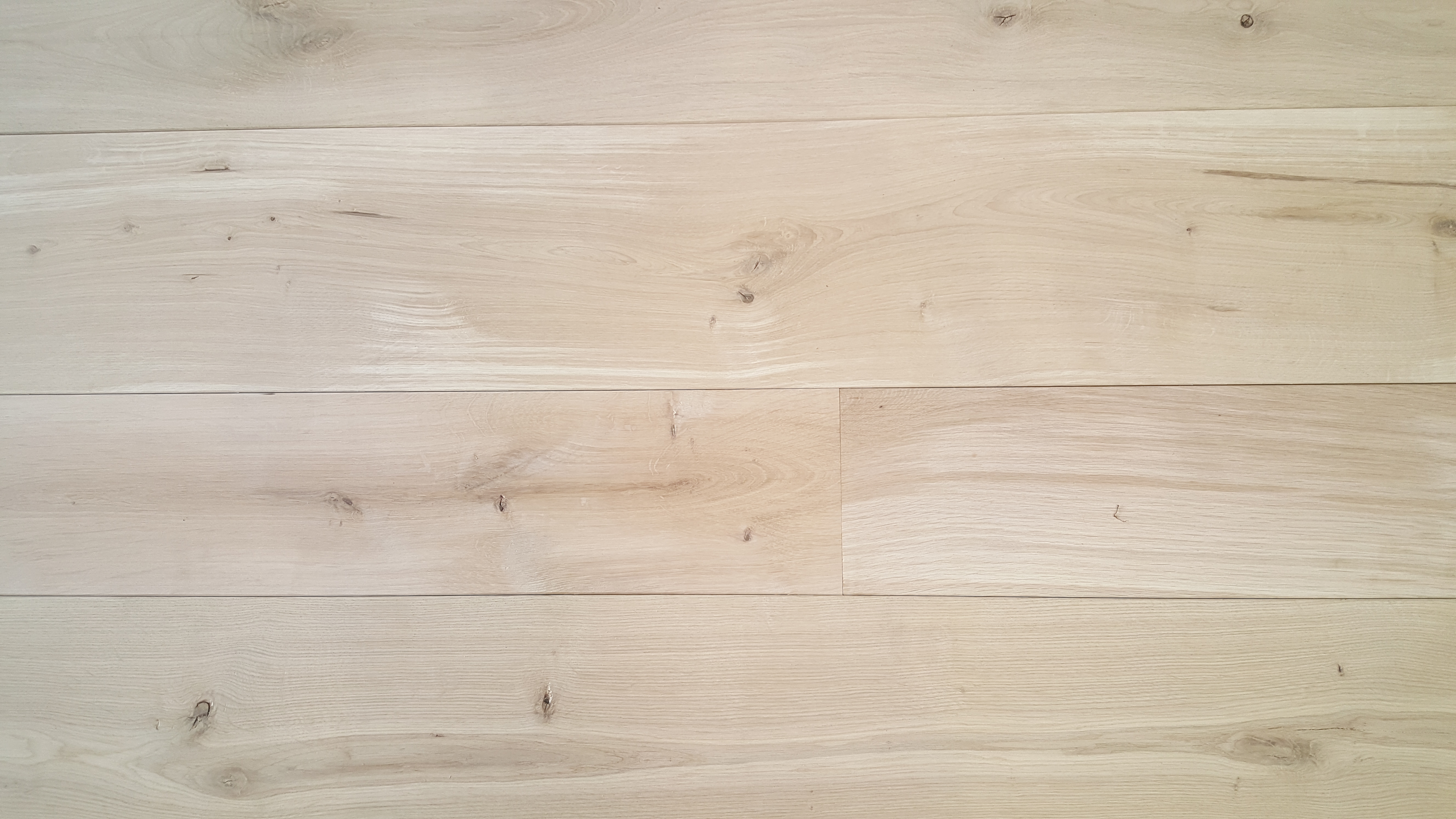 Hardwood Vs Softwood ~ What s the difference between hardwood and softwood